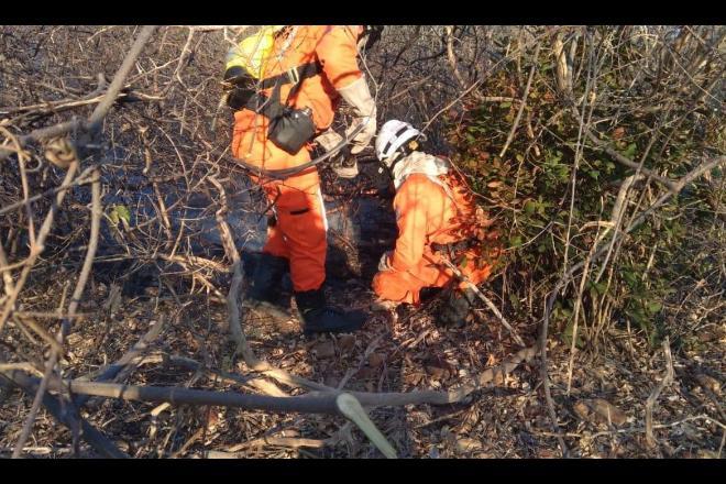Operação Guardiões do Bioma combateu 3.600 incêndios no MS